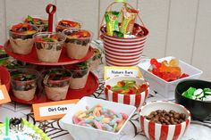 Dirt cups, nature bars, gummy worms, chocolate covered raisins, gummy frogs & bugs