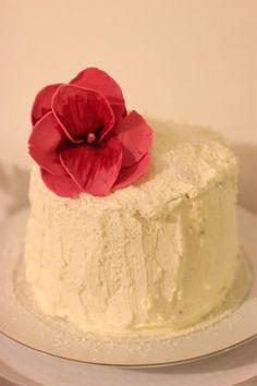 mi pastel de cumpleaños / torta de capa de coco