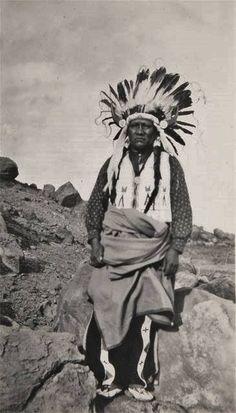 Mountain Sheep - Ute - Ca. 1910
