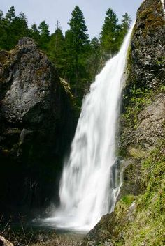 Henline Falls, 126': ~35 mi E of Salem: N Fork Rd SE via Hwy 22 Rio, Beautiful Places, Beautiful Pictures, Oregon Waterfalls, Waterfall Fountain, Beautiful Waterfalls, Best Photographers, Amazing Nature, Trip Planning