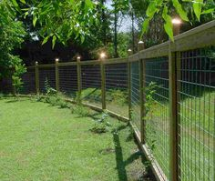 Naturescapers welcome wildlife but some need exclusion with a good fence (deer).