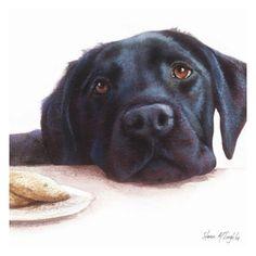 labrador+retrievers+at+christmas | Watercolour Black Labrador Retriever' (Ref: 57491)