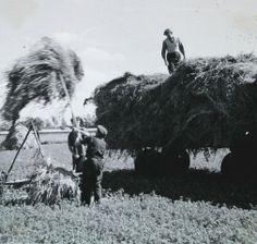 landarbeiders 1962