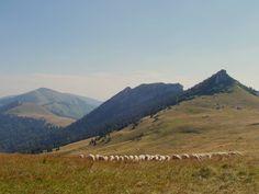 Slovak national park Big Fatra 🏔