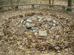 Land art based on the work for Andrew Rogers (2/2)