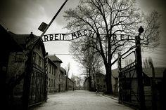 Auschwitz in black and white by alexthegreatphotographer, via Flickr