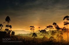 Morning light by Saelanwangsa. Please Like http://fb.me/go4photos and Follow @go4fotos Thank You. :-)