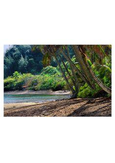 Hanalei Bay in Kauai, HI