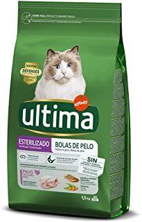 Comidaparagatos Gatosdeinstagram Mascotas Gatitos En 2020 Comida Para Gatos Comida Gatos