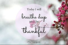 """Breathe Deep and  Be Thankful! A beautiful picture by Ann Voscamp, """"One Thousand Gifts"""""""