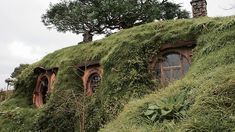 Hobbiton (film set) Matamata NZ The Shire where hobbits from J.Tolkien Lord of the rings lived Tolkien, Light Film, Natural Homes, Chronicles Of Narnia, Fairy Houses, Middle Earth, The Hobbit, Hobbit Hole, Habitats