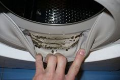 How to Remove Dangerous Mold and Unpleasant Odors from Your Washing Machine with 2 Ingredients If you suddenly start to notice that your clothes get a strange odor after washing, and there are black stains between Diy Cleaning Products, Cleaning Hacks, Cleaning Supplies, Remove Black Mold, How To Remove, Clean Your Washing Machine, Cleaning Agent, Black Stains, Home Hacks