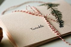twinkle . holiday cards