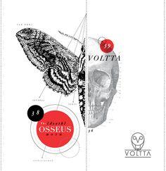 """TIP ILUSTRACIÓN: """"Desde un punto de vista estrictamente científico, las consideraciones estéticas son secundarias: si las representaciones son también decorativas, debe considerarse una ventaja. Pero, en realidad, las mejores ilustraciones y las más eficaces, son aquellas que sirven tanto en el arte y la ciencia"""". (Gross, 1994) www.voltta.com.co Moth, Street Style, Illustration, Cards, Poster, Design, Point Of View, Science, Dots"""