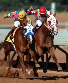 6 of the best horse races from around the world racing pinterest learn about handicapping at quarter horse races and how to make a wagering plan publicscrutiny Gallery
