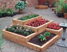 tiered wood  raised bed