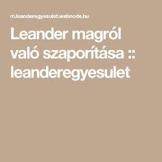 Leander magról való szaporítása :: leanderegyesulet