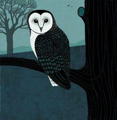"Jon Brooks ""Shapwick"" Barn Owl edition back cover. Owl Illustration, Illustrations, Owl Quilts, Owl Bags, Felt Owls, Owl Pictures, Beautiful Owl, Animal Tattoos, Whimsical Art"
