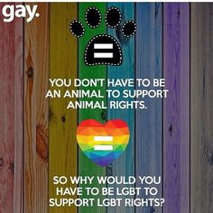 Support LGBT Rights!  You don't have to be an animal to support animal rights. So why you would have to be Lgbt to support Lgbt right?? #lgbt #lgbtq #lgbtpride #lgbtrights #pride #gay #lesban #equality