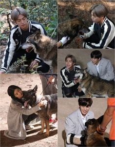 VIXX's Hongbin, Lee Hyun, and more mingle with wolfdogs for 'Murim School' | allkpop.com