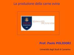 La produzione della carne ovina Prof. Paolo POLIDORI Università degli Studi di Camerino.
