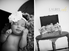 Laurel isle Photography - newborn