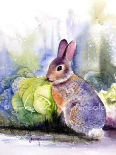 Rabbit In Cabbage Patch by Ginny Wall Watercolor Animals, Watercolor Paintings, Watercolours, Anime Comics, Bunny Painting, China Painting, Rabbit Art, Bunny Art, Painting Inspiration