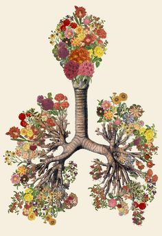 Surreal Anatomical Collage Art Made from Vintage Scientific Illustrations by Travis Bedel.