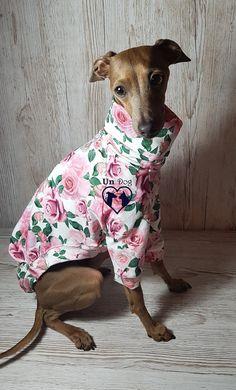 Italian greyhound t-shirt in roses print, designed and made by UniDog #iggy #italiangreyhound #dogtshirt #roses