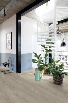 Inspiratie voor uw nieuwe PVC Vloer! - Knulst PVC Vloeren