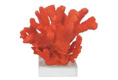 "10""Faux Orange Coral w/ Plexiglass Base 10""x9""x8"" $40"