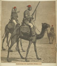 Egypt, 1820-1898. The Vinkhuijzen collection of military uniforms / Egypt. / Egypt, 1820-1898.