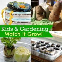 Magical Gardening - Growing with Seeds