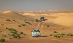 Abu Dhabi — Best Place to take a part in desert safari