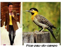 Bicho do Dia - Pica-pau-do-campo. Calça C&A, malha e camiseta Zara e casaco Bob Store.