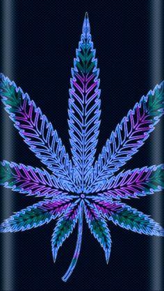 Marijuana Wallpaper, Weed Wallpaper, Phone Wallpaper Images, Live Wallpaper Iphone, Cool Wallpapers For Phones, Love Wallpaper, Screen Wallpaper, Weed Backgrounds, Wallpaper Backgrounds