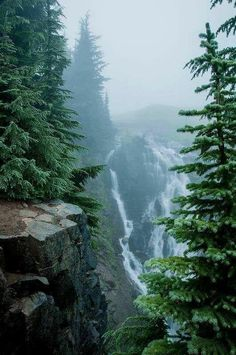 nature, scenery, vacation, waterfall, beauty by ホワイト蛾 Places To Travel, Places To See, Travel Destinations, Mount Rainier National Park, Jolie Photo, Parcs, Adventure Is Out There, Beautiful Landscapes, The Great Outdoors