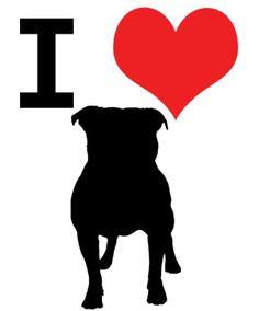 I love My Pitbull Gordo !