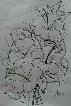 Best Pics Hibiscus dessin Suggestions Improve sultry hibiscus regarding a large, vivid appearance in your yard, porch or perhaps patio. Flower Sketches, Art Sketches, Doodle Drawing, Drawing Pin, Sketch Drawing, Fabric Paint Designs, Drawing Templates, Pencil Art Drawings, Painting Patterns