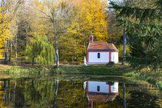 Hungary, Bird, Outdoor Decor, House, Travel, Beautiful, Home Decor, Viajes, Decoration Home