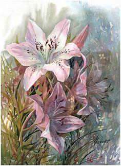Pink lily by kosharik69 on DeviantArt