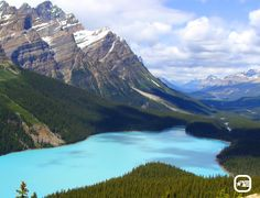 On your next trip to Canada, swing by the beautiful Peyto Lake in Banff National Park. It gets its stunning blue color from suspended fine rock particles known as glacial flour.