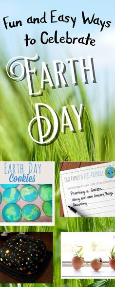 The Jersey Momma: Fun and Easy Ways to Celebrate Earth Day
