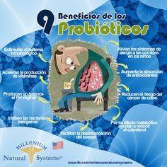 ¿No sabes que son los probióticos? Aquí te explicamos la importancia de ellos para tu salud.