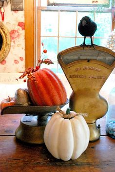 Fall vignette and scale