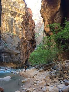 """My trip to Zion Canyon National park; """"hiking the Narrows"""" was Rad Hiking The Narrows, Zion Canyon, Cool Pictures, National Parks, Water, Travel, Outdoor, Gripe Water, Outdoors"""