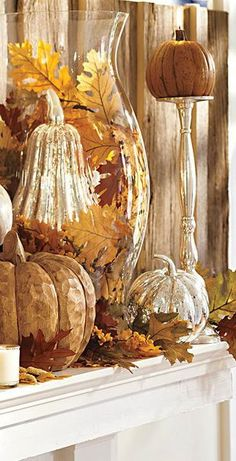Fall Display | Buyer Select - pumpkins and golden glow.