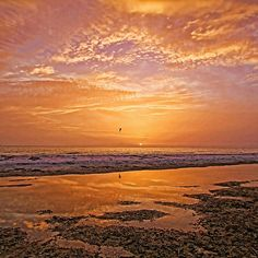 Summer Winds - by HHPhotographyFL  #tropicalsunset #colorfulsunset #Floridabeaches via @hhphotography3