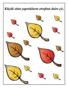 okul_öncesi_yaprak_boyut.jpg (464×600)