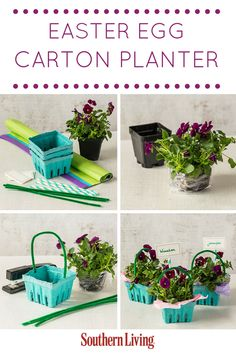 Easter Egg Carton Planter | Produce cartons find a second life as planters for spring flowers, perfect to give as a small gift or party favor.